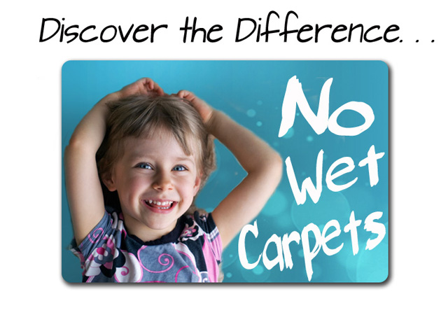 Shield Organics Carpet Cleaning Services Santa Ana California