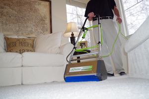 Dry Organic Carpet Cleaning in Russia Ohio