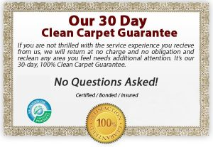 Dry Organic Carpet Cleaning in Marion Iowa.